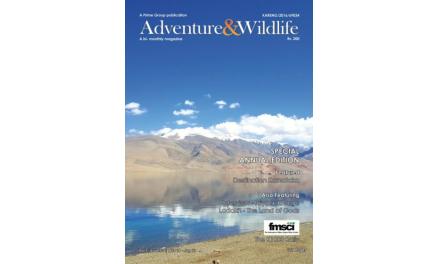 Vol 1 | Issue-5-6 | Nov-16 – Jan-17