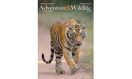 Vol 1   Issue 4   Sep 2016