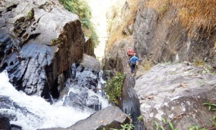 Bengaluru trio discovers a Knotty Canyon in Wayanad