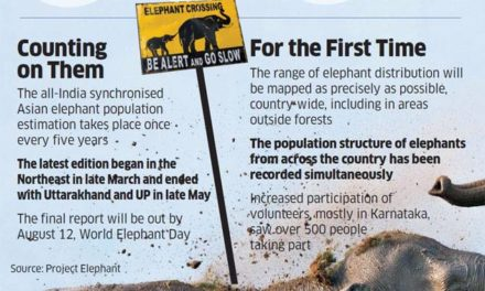 How the national elephant census went about the job of counting the beast