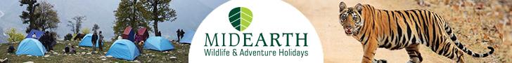 Mid Earth Leaderboard