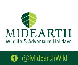 Mid Earth Logo Ad