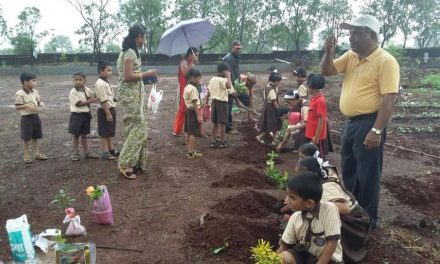 5.5 crore saplings to be planted across Maharashtra during Van Mahotsav