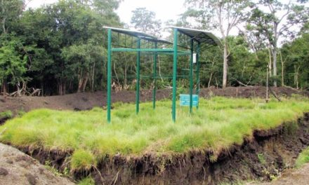Solar-powered pumps to revive 100 water bodies in forests