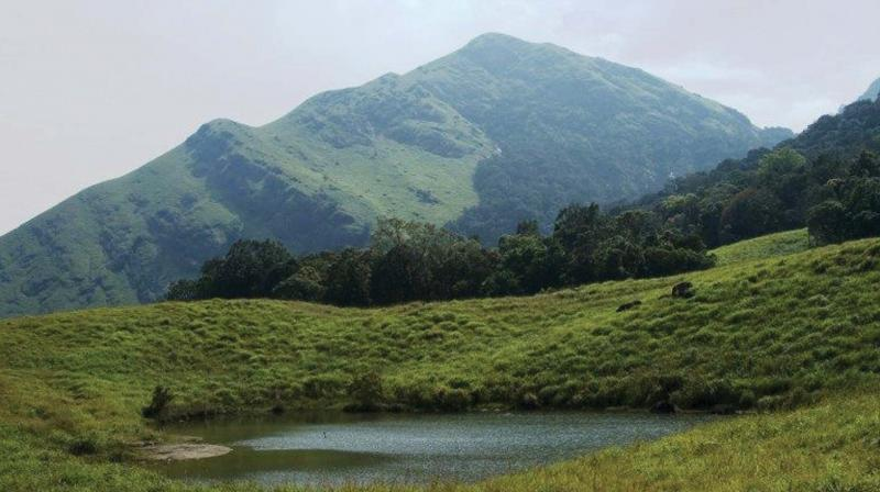 Chembra Peak to open today