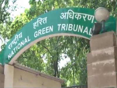 NGT bans mining in forest, buffer zone of Ranthambore