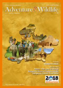 Vol 2-Issue 2-3-July-Sep 2017 cover picture