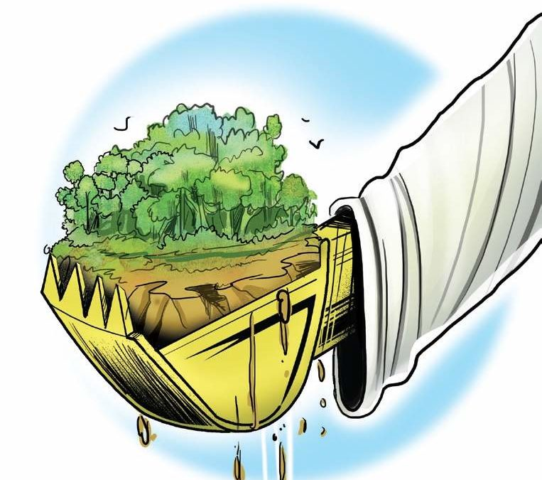 Chennai-Salem Green Corridor Express Highway project puts 100 hectares of forests in danger