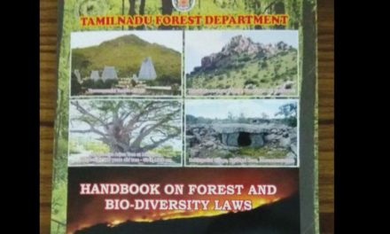 Tamil Nadu: Foresters document heritage sites and flora
