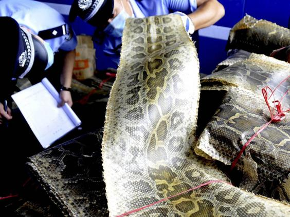 Illegal wildlife trade is one of the biggest threats to endangered species