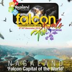 Amur Falcon Conservation Week and Festival 2018