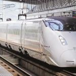 First build safe animal passages, then lay bullet train lines: Wildlife board