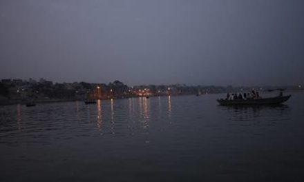 Wildlife Institute of India is conducting survey of aquatic fauna in Ganga river: Government