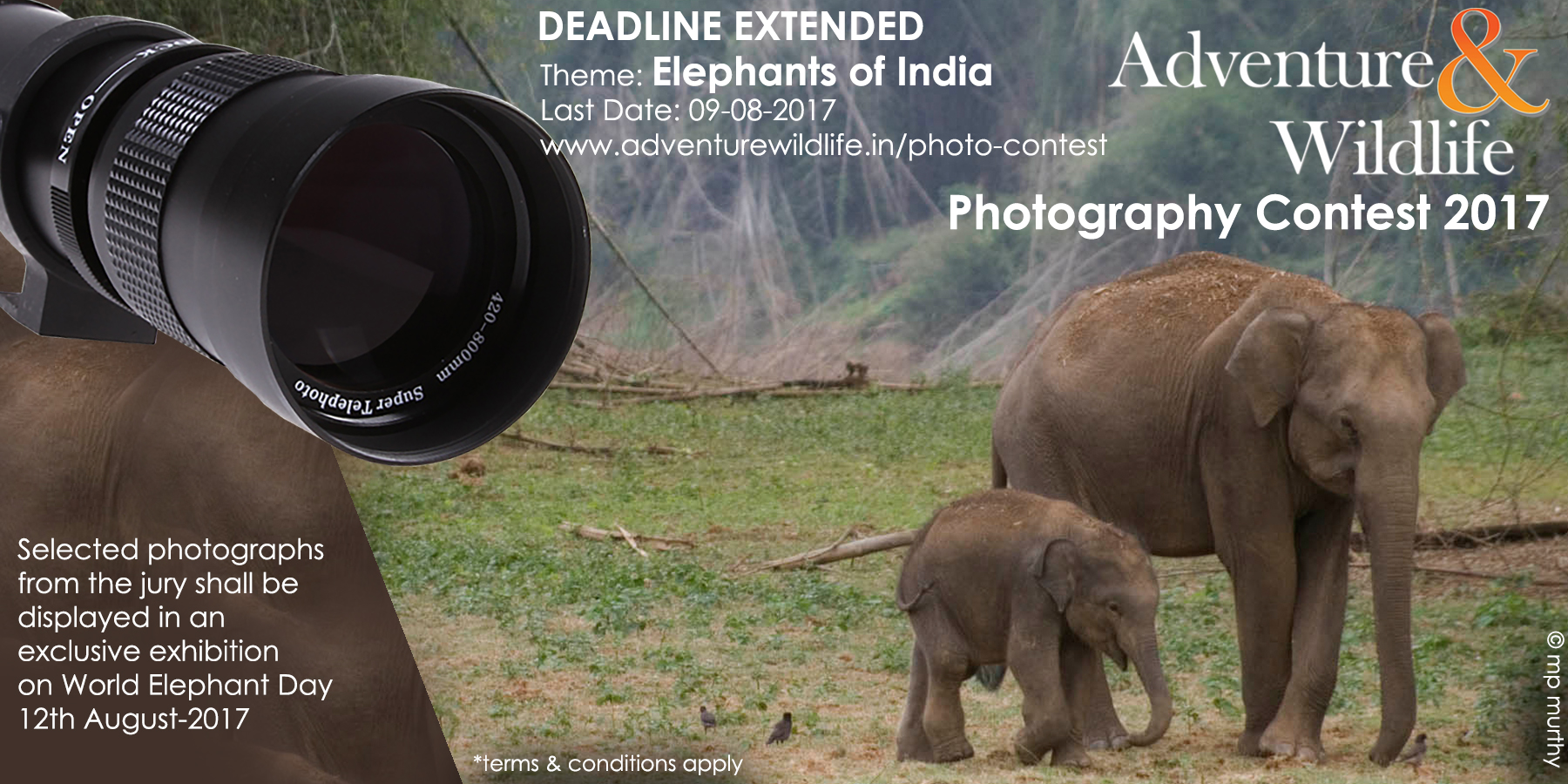 A&W Photography Contest