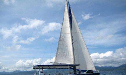 Sailing Basics!