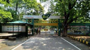 Tata zoo